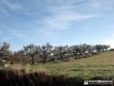 Parque Natural Arribes de Duero;viajes en fin de año viajes fin semana viaje naturaleza